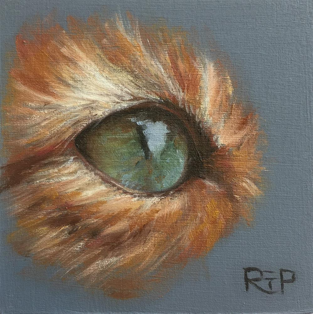 """Cat Eye study"" original fine art by Rhea  Groepper Pettit"