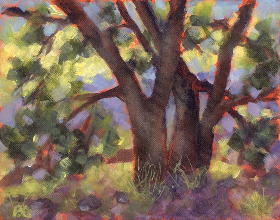 """Three Tree"" original fine art by Pamela Gatens"