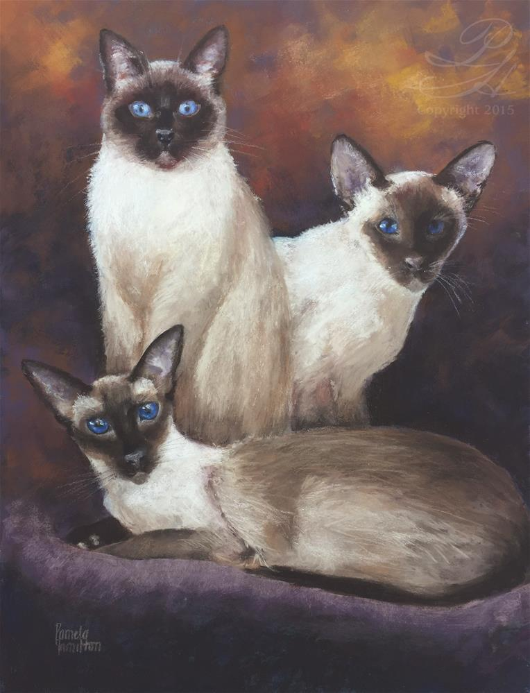 """We Are Siamese"" original fine art by Pamela Hamilton"