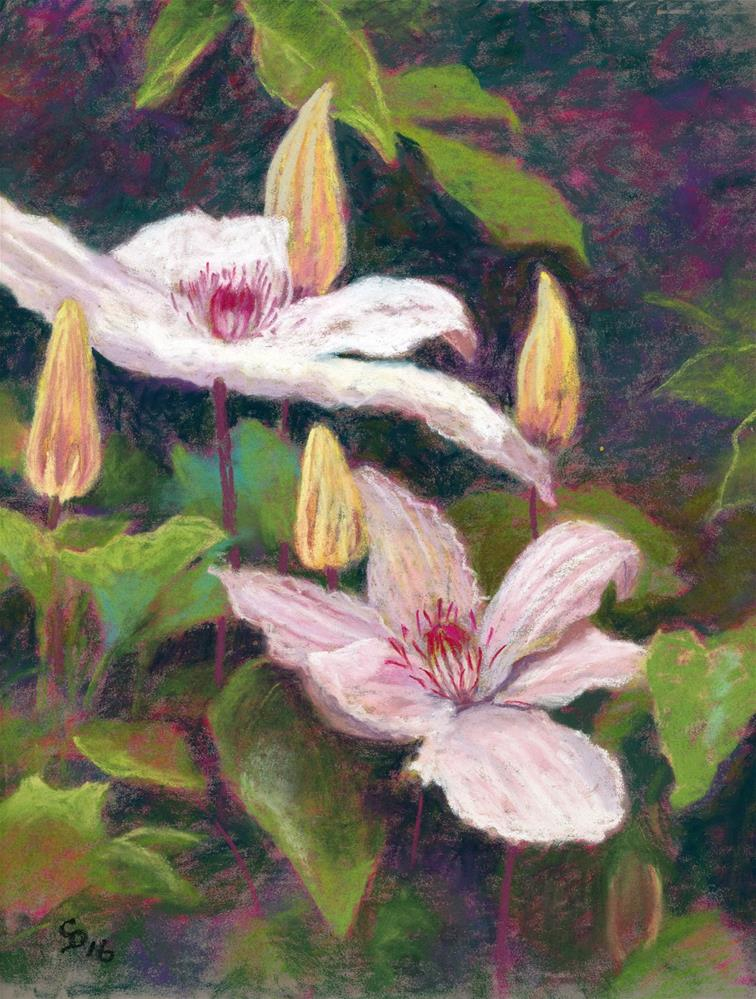 """Clematis"" original fine art by Christine Derrick"
