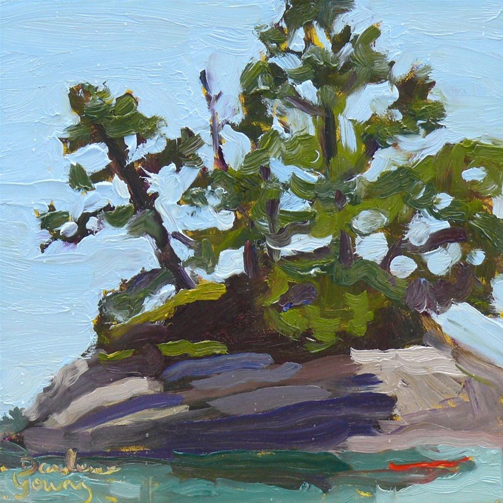 """613 Lady's Hat Island, Metchosin"" original fine art by Darlene Young"