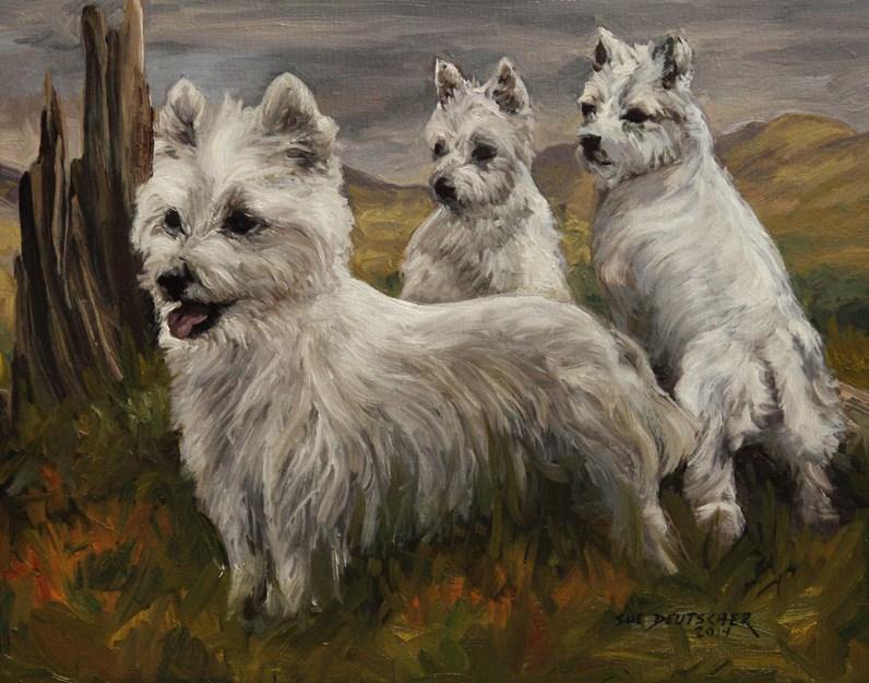 """""""West Highland Terrier"""" original fine art by Sue Deutscher"""