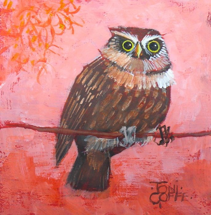 """Another Little Owl"" original fine art by Toni Goffe"