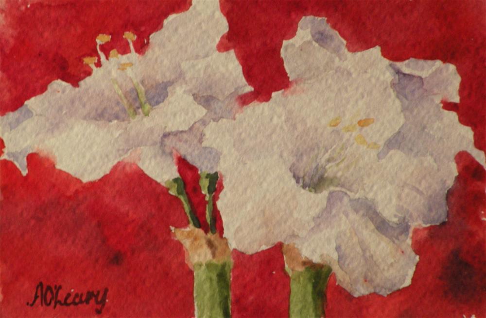 """Amaryllis"" original fine art by Alice O'Leary"