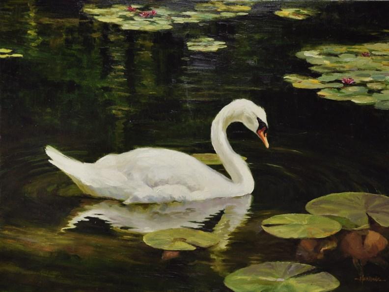 """""""Swan"""" original fine art by Scott Harding"""