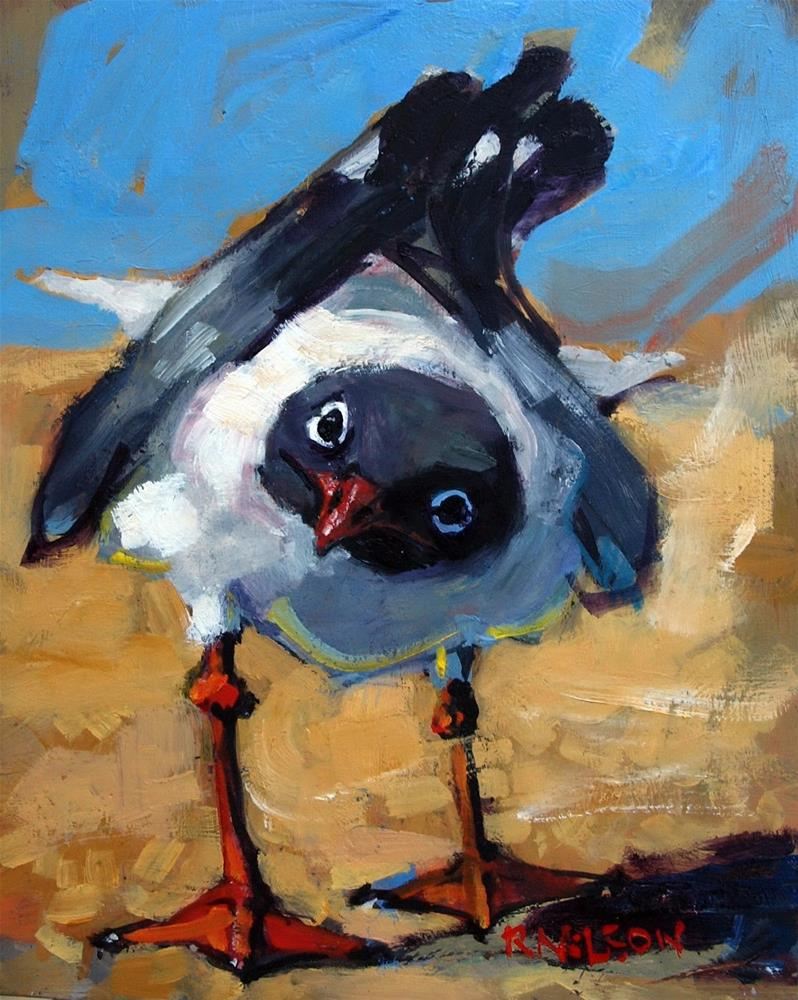 """Inquiring Gull"" original fine art by Rick Nilson"