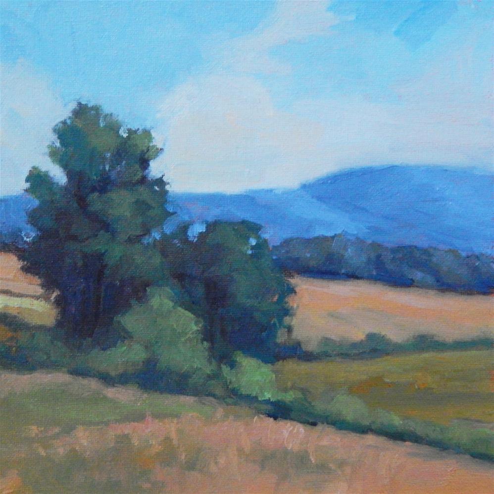 """""""Fields of Beauty"""" original fine art by Lisa Kyle"""