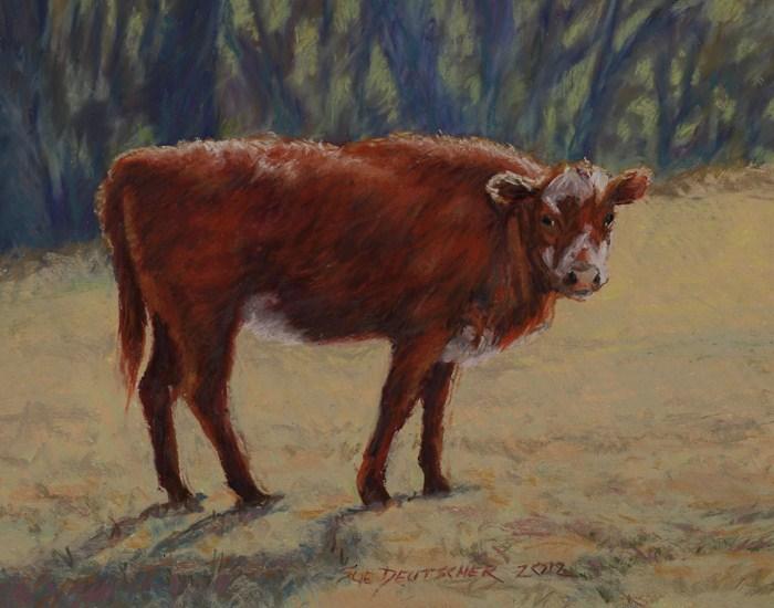 """""""Little Brown Cow"""" original fine art by Sue Deutscher"""
