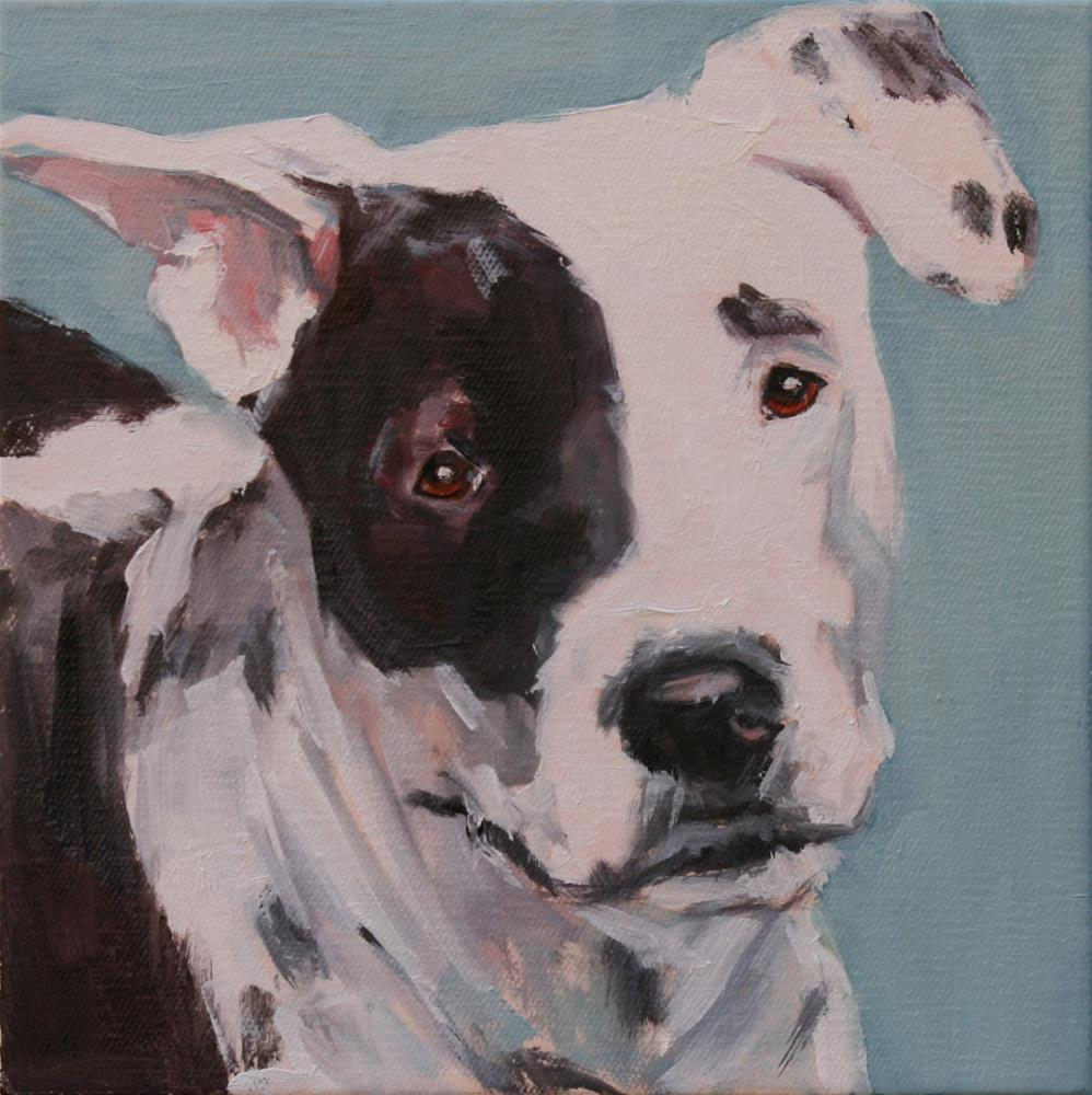 """winston"" original fine art by Carol Carmichael"