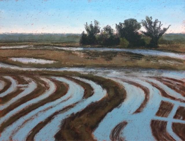 """""""WATERMARKS"""" original fine art by Marti Walker"""