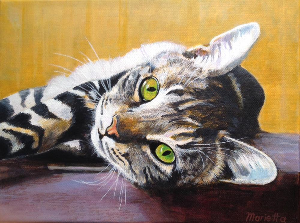 """ Tabby "" original fine art by Marietta Modl"