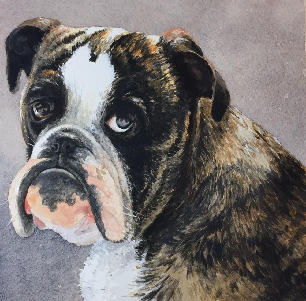 """""""Rocco"""" original fine art by Laurie Maher"""