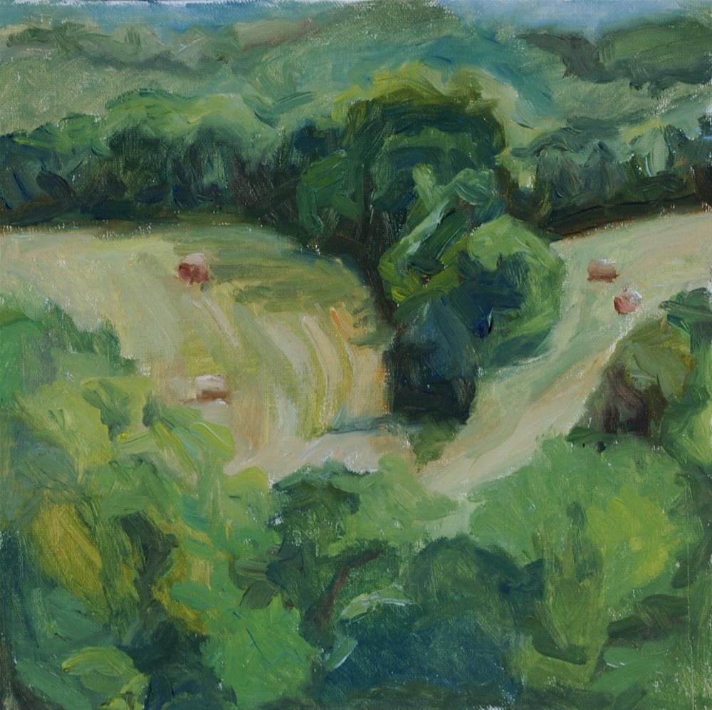 View from Studio—Spring original fine art by Carol DeMumbrum