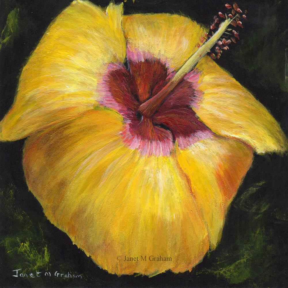 """Yellow Hibiscus"" original fine art by Janet Graham"