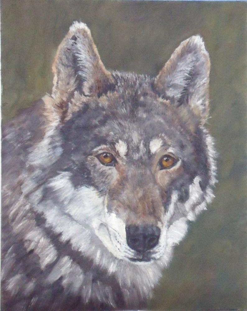"""Wolf"" original fine art by Nelvia  McGrath"