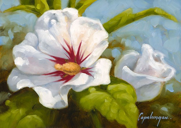 """Rose Of Sharon"" original fine art by David Capalungan"