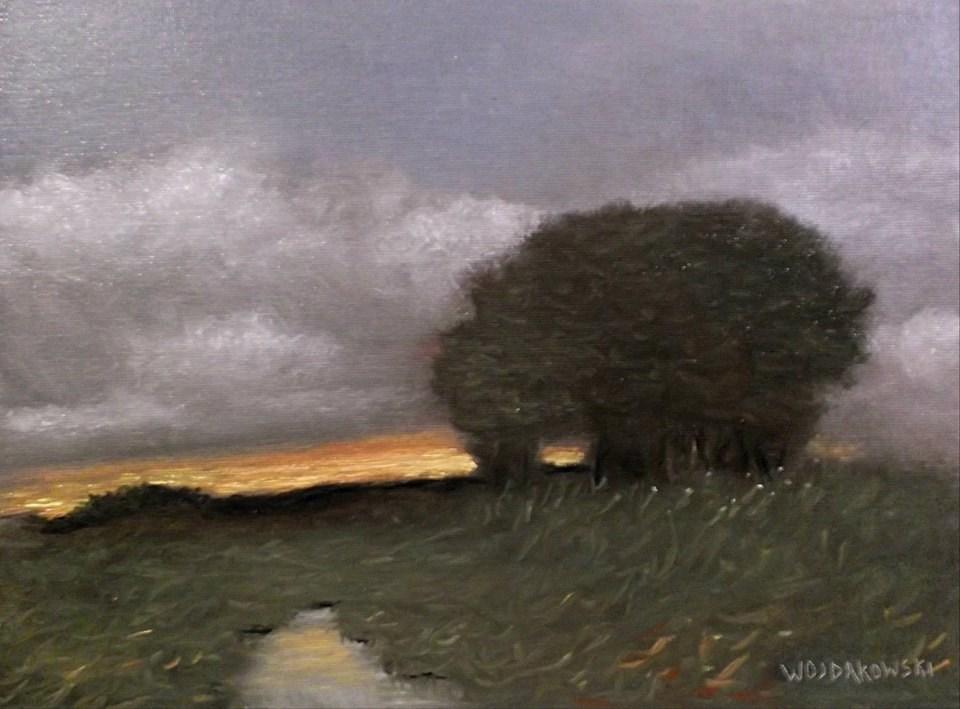 """Fading light"" original fine art by Joe Wojdakowski"