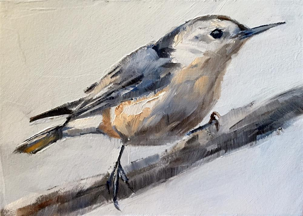 """""""White Breasted Nuthatch"""" original fine art by Gary Bruton"""