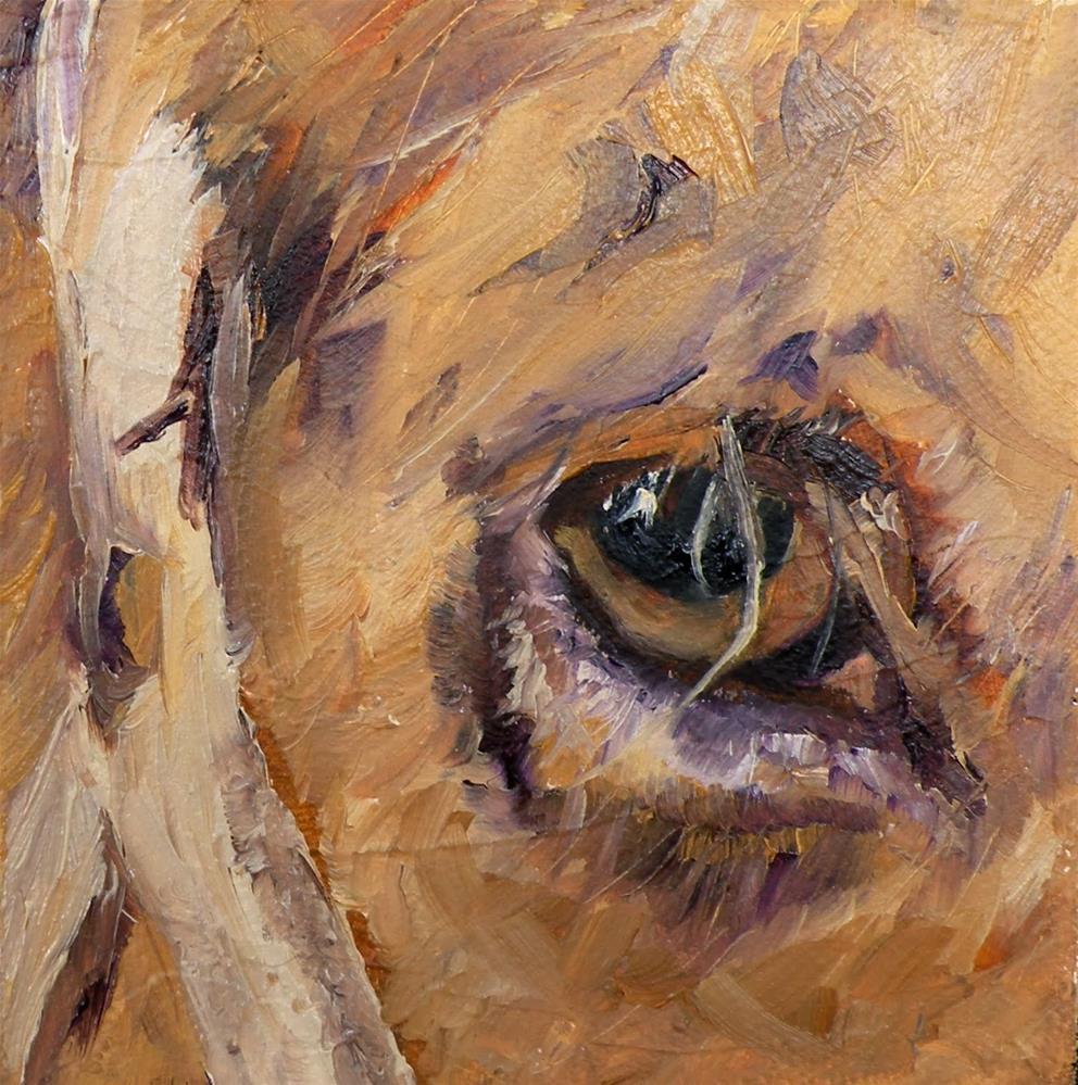 """BROWN EYES A HORSE ORIGINAL OIL ON TEXTURED DEEP CANVAS © SAUNDRA LANE GALLOWAY"" original fine art by Saundra Lane Galloway"