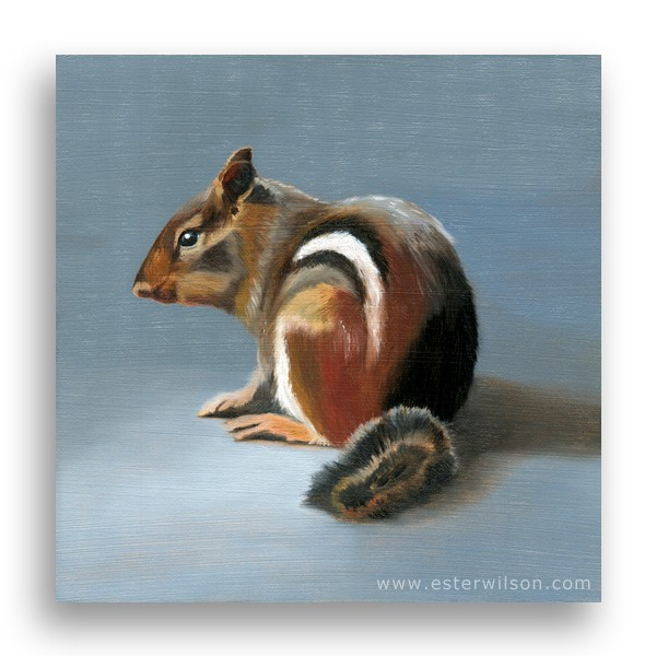 """Chipmunk"" original fine art by Ester Wilson"