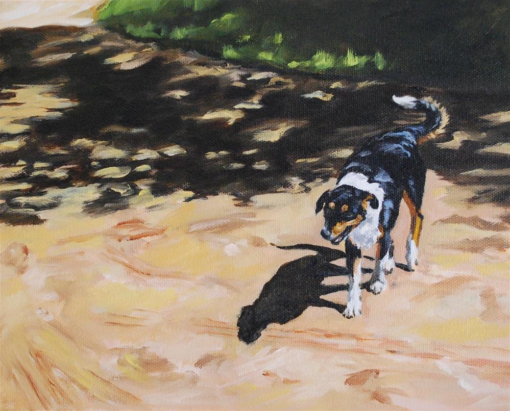 """Seeking shade"" original fine art by Beverley Phillips"