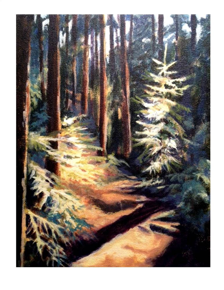 """Cathedral Woods II Monhegan"" original fine art by Suzanne Woodward"