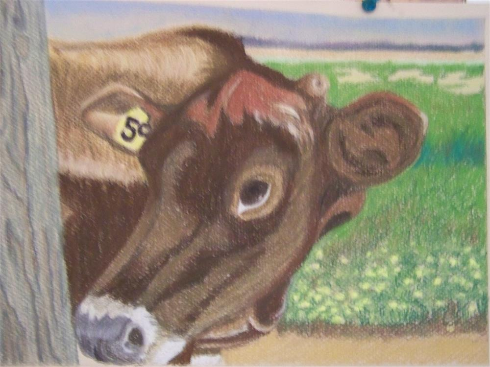 """""""Jersey Cow 2"""" original fine art by Elaine Shortall"""