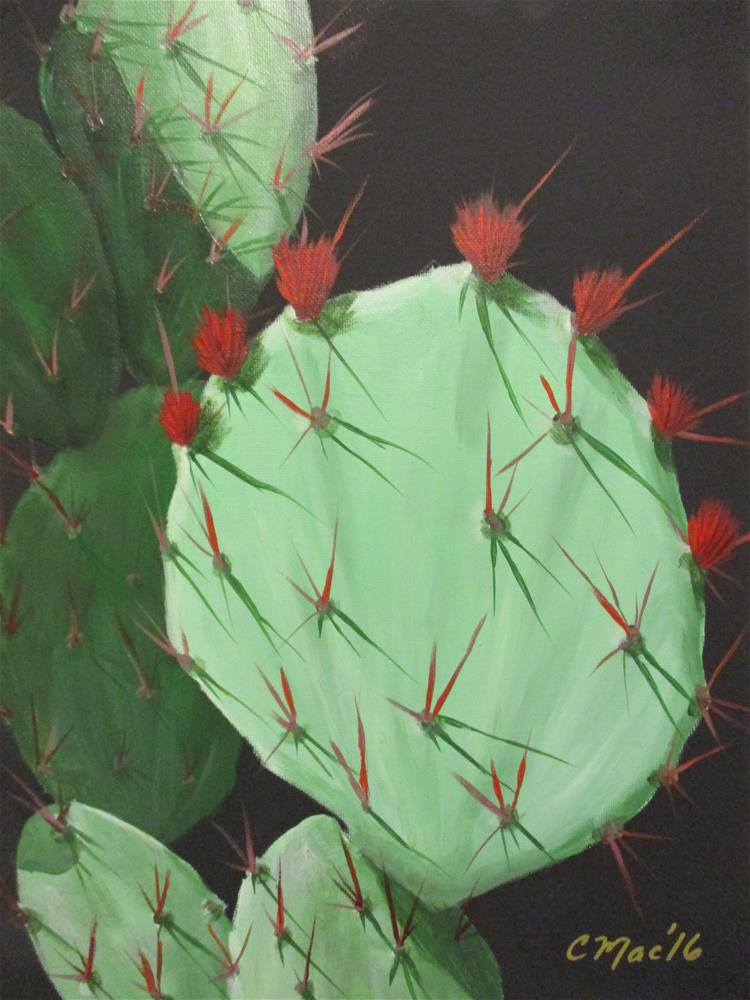 """Cactus Flowers, Phoenix Botanical Gardens"" original fine art by Chris MacCormack"