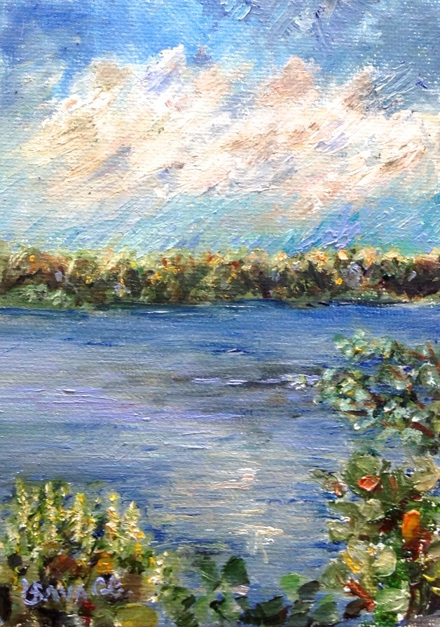 """Ding Darling National Reserve"" original fine art by Judy Usavage"