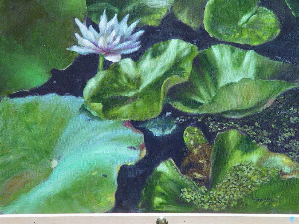 """Under the Lilypads"" original fine art by Lina Ferrara"