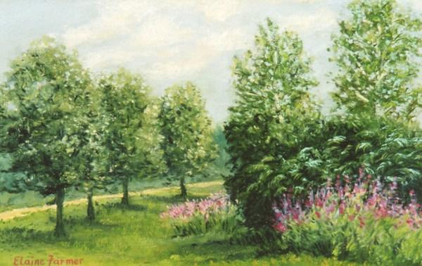 """Summer Daze"" original fine art by Elaine Farmer"