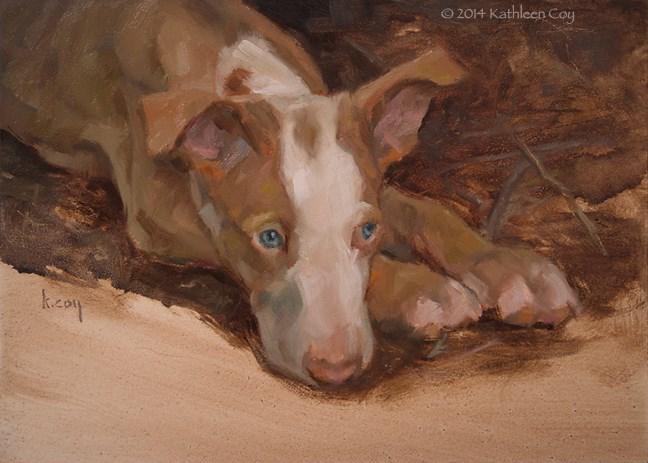 """""""Day 31 - Ibizan Hound Puppy"""" original fine art by Kathleen Coy"""