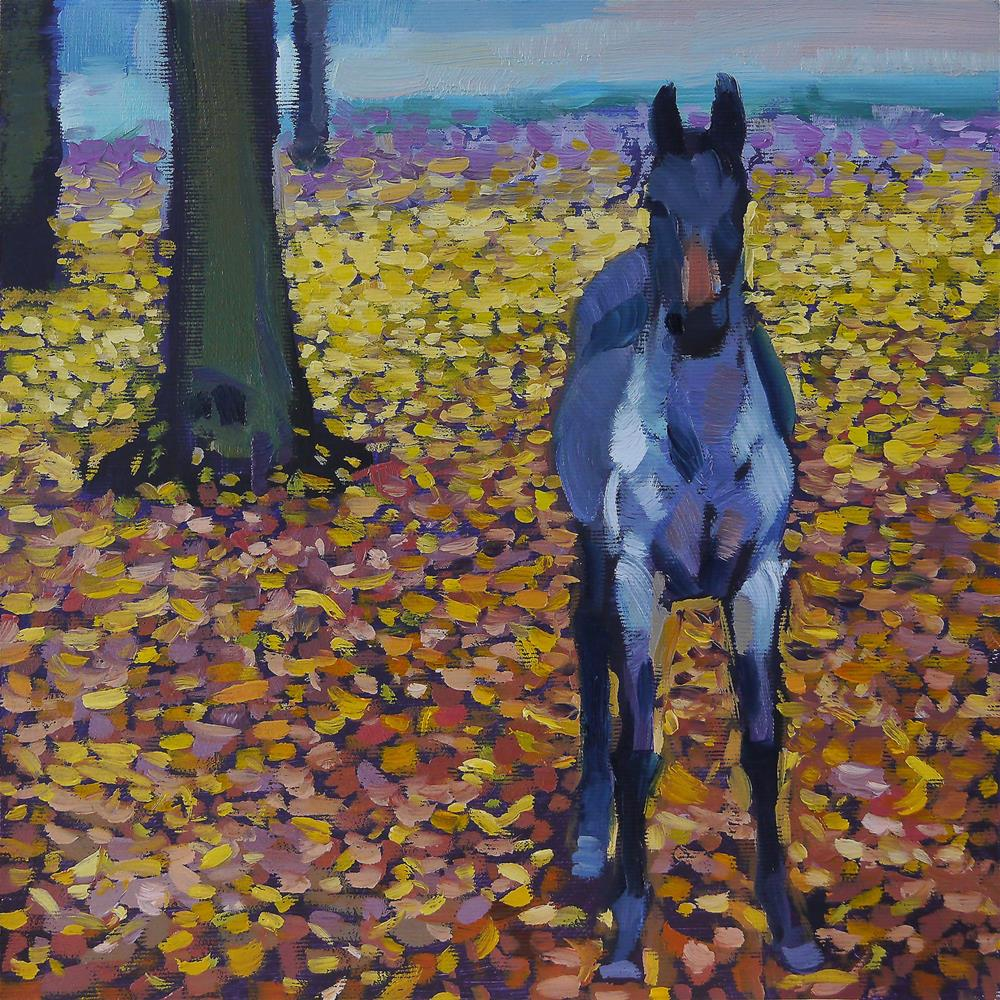 """gray colt"" original fine art by Beata Musial-Tomaszewska"
