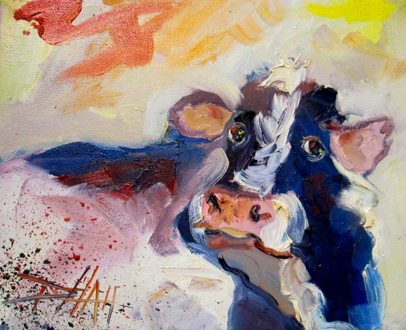 """Cow Expressions"" original fine art by Delilah Smith"