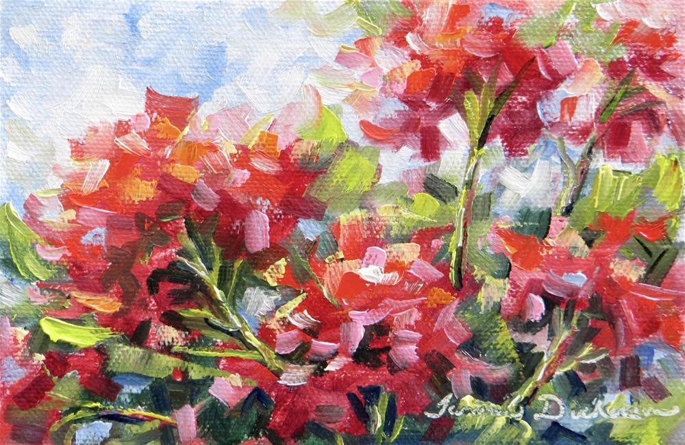 """September Geraniums"" original fine art by Tammie Dickerson"