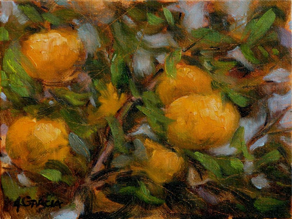 """Hua'ala Oranges"" original fine art by Jeannie Garcia"
