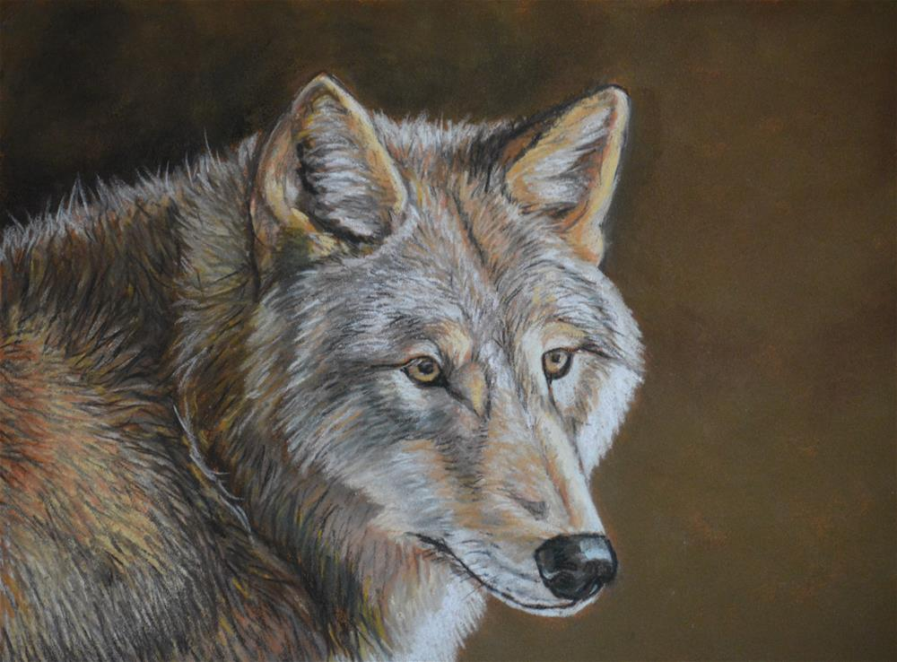"""Gray Wolf"" original fine art by Charlotte Yealey"