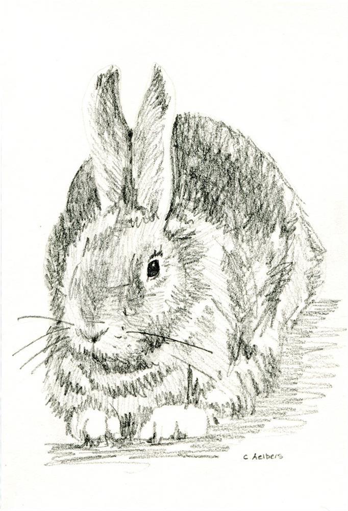 """""""Rabbit at Rest"""" original fine art by Corinne Aelbers"""
