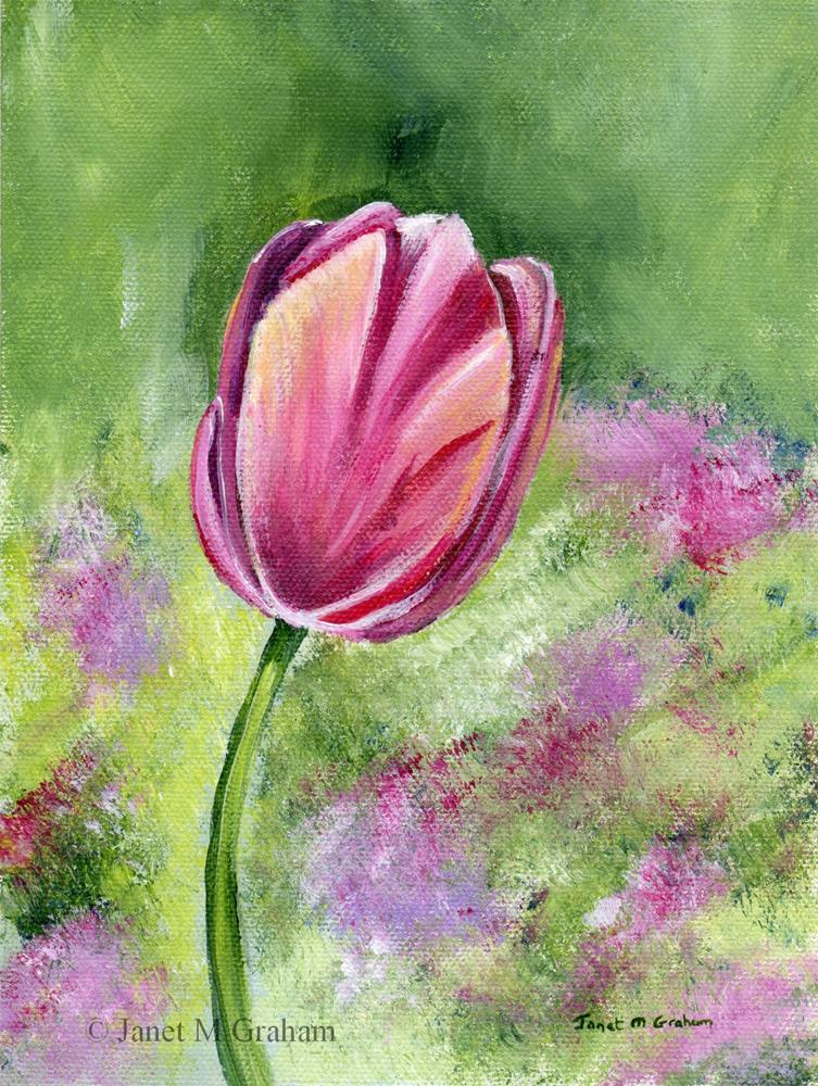 """Pink Tulip"" original fine art by Janet Graham"