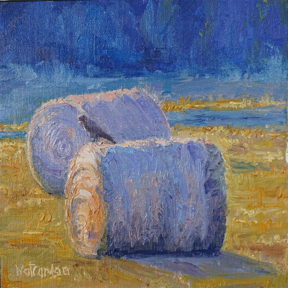 """Hay There"" original fine art by Patricia Matranga"