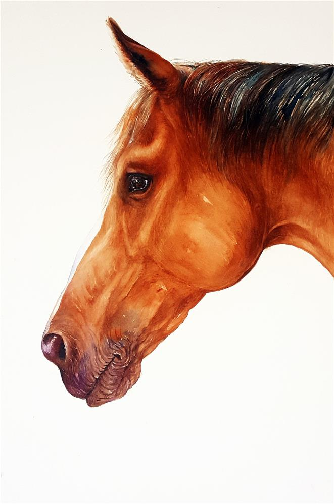"""""""Bourbon the Brown Horse"""" original fine art by Arti Chauhan"""