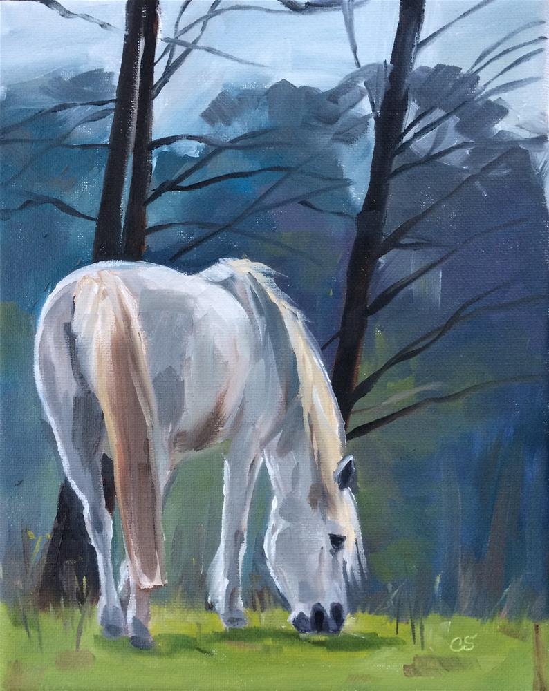 """Beside The Still Waters"" original fine art by Carol Stickley"