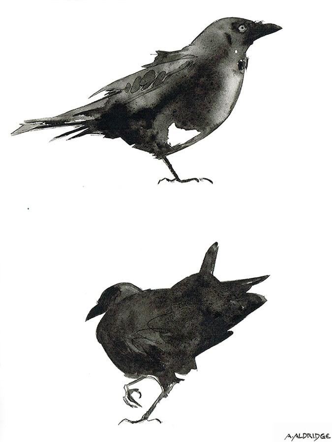 """Two Crows"" original fine art by April Aldridge"