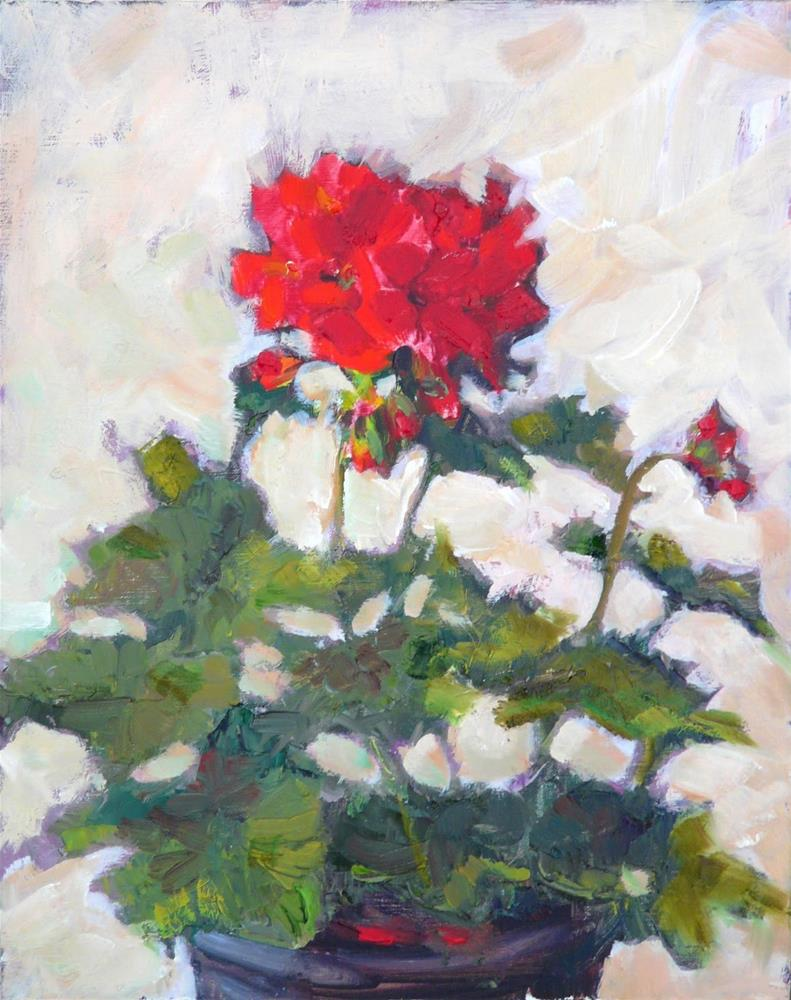 """Geraniums,still life,oil on linen,10x8,price$250"" original fine art by Joy Olney"