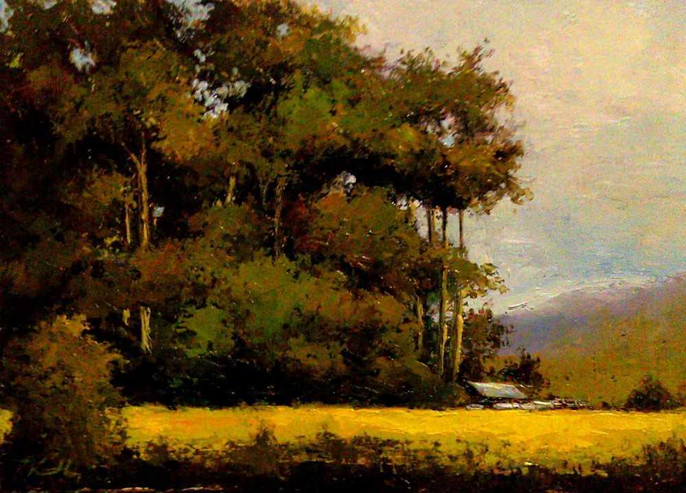 """Tall Trees"" original fine art by Bob Kimball"