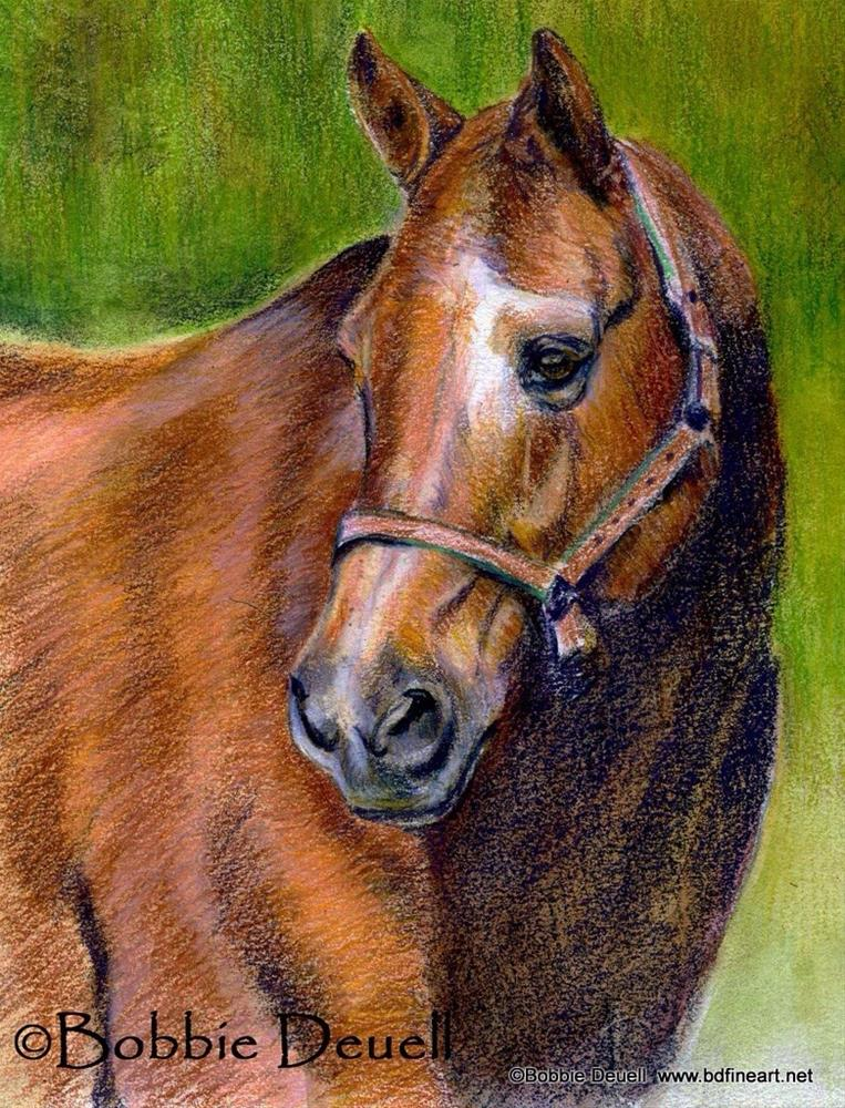 """#20 Quarter Profile"" original fine art by Bobbie Deuell"