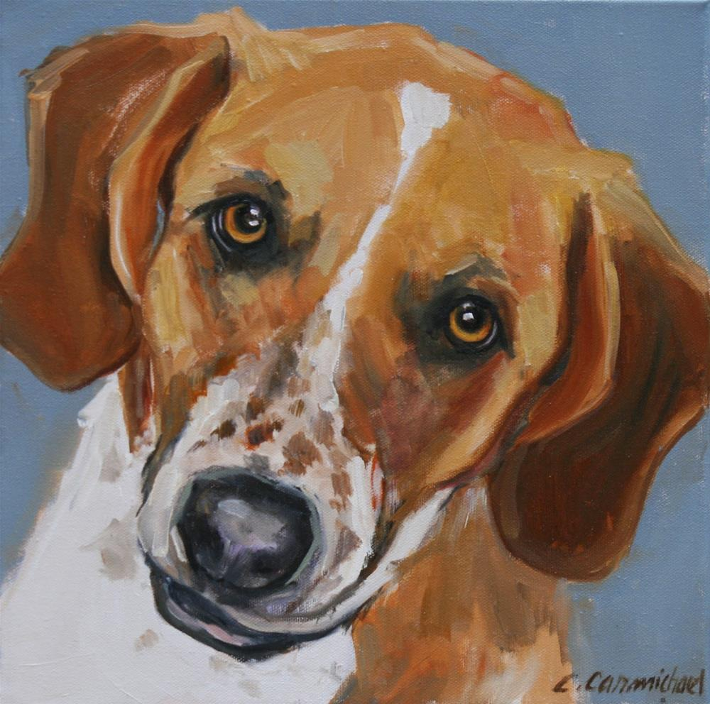 """murphy"" original fine art by Carol Carmichael"