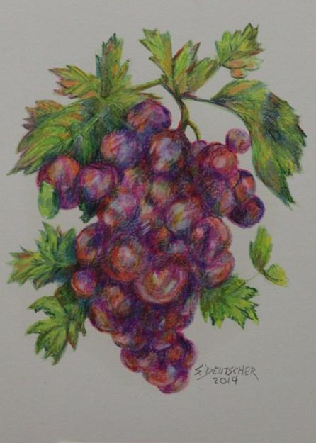 """""""Grapes"""" original fine art by Sue Deutscher"""