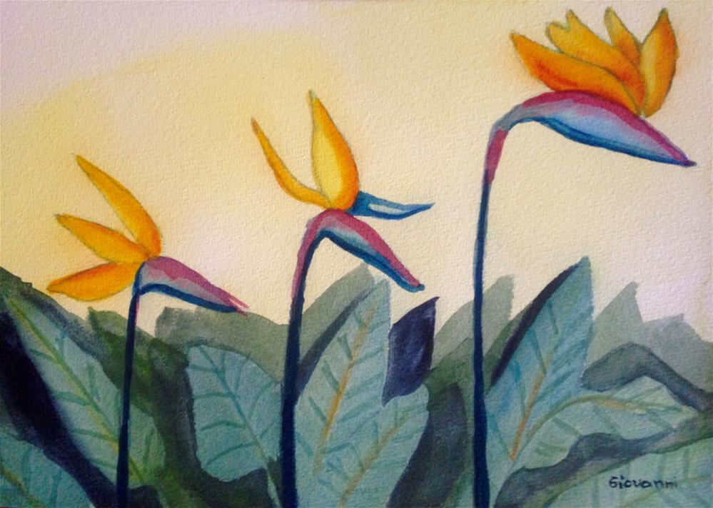 """A parade of bird of paradise flowers"" original fine art by Giovanni Antunez"