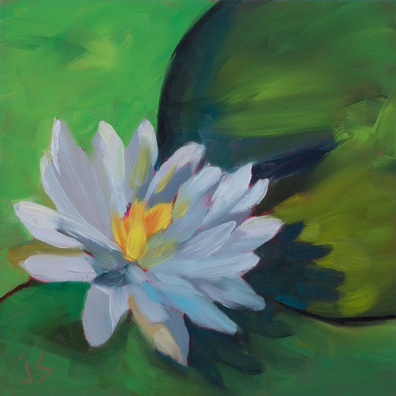 """Water Lily - Tranquility Beckons"" original fine art by Johnna Schelling"